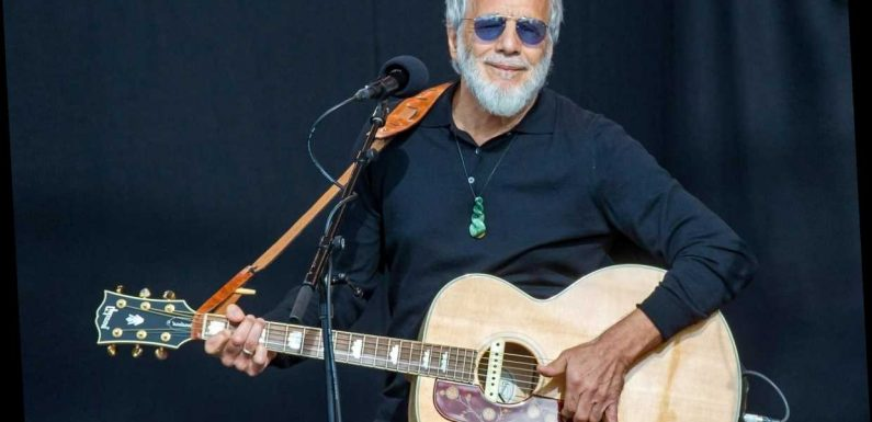 Hear Unreleased Cat Stevens Song 'Butterfly' From 'Back to Earth' Box Set
