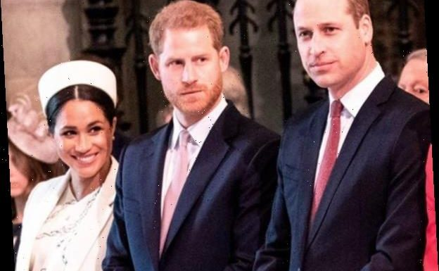 Prince Harry, Prince William Slam Bullying Reports In Rare Statement