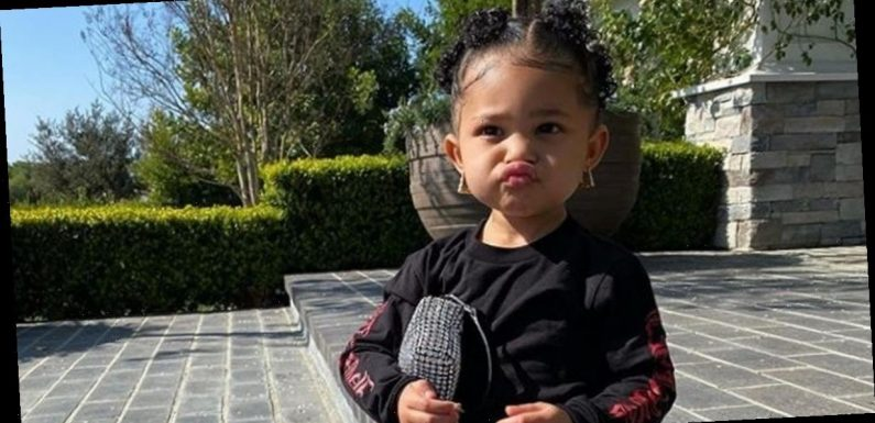 Kylie Jenner gushes over 'love of her life' Stormi as she shows off her mini-me