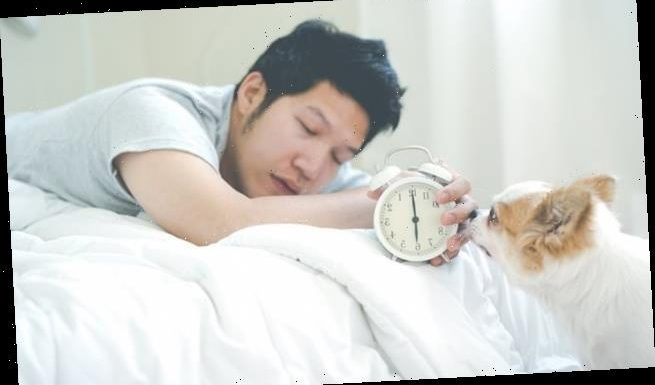 Waking up to a harsh alarm clock can leave you groggy