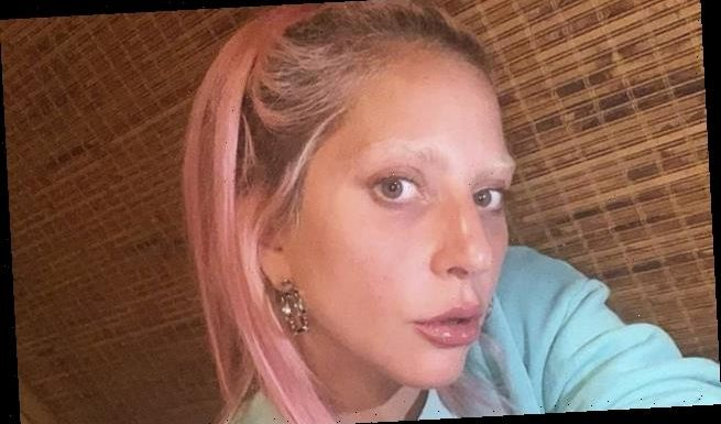 Lady Gaga shows off bleached EYEBROWS in new selfie