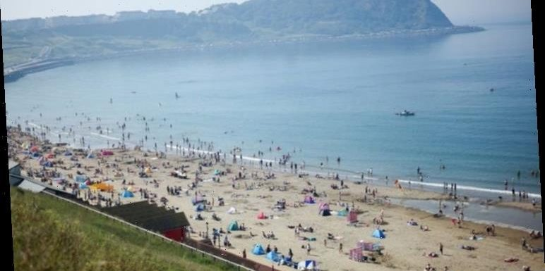 End of summer holidays: Half of sandy beaches could be gone by the end of the century