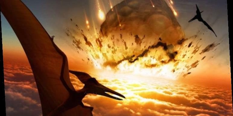 Asteroid warning: Earth at risk of being burnt to cinder like dinosaurs, says expert