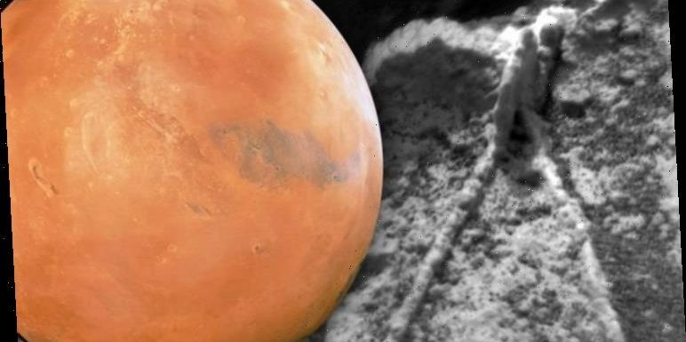 Life on Mars: 'Fossils and worms found on Red Planet' claim alien hunters