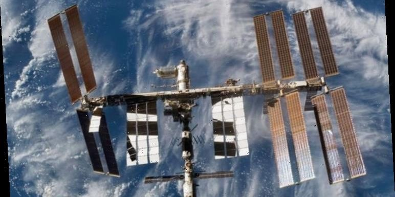NASA news: International Space Station begin growing ORGANS in zero gravity