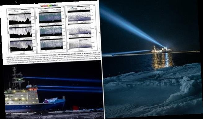 Light pollution from ships is playing havoc with Arctic marine animals