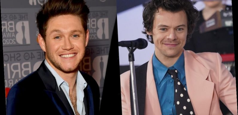 Harry Styles & Niall Horan's Album Lyrics Have A Connection That Has Fans In Their Feels