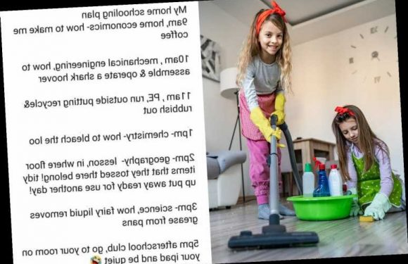 Mum shares her hilarious homeschooling plan for 'home economics' and parents are instantly on board