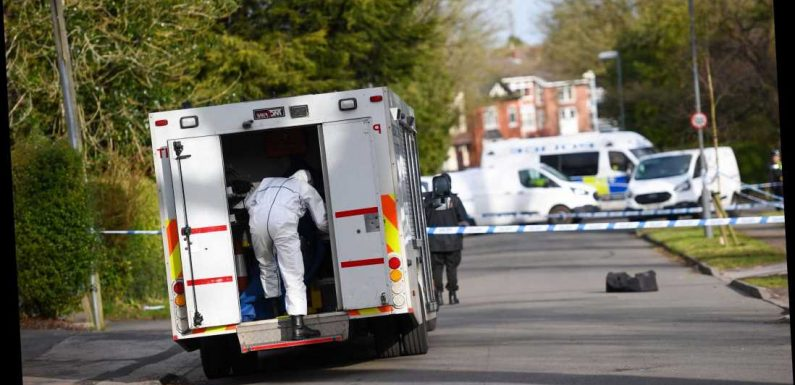 Two women stabbed to death in Birmingham as man arrested for 'double murder' – The Sun