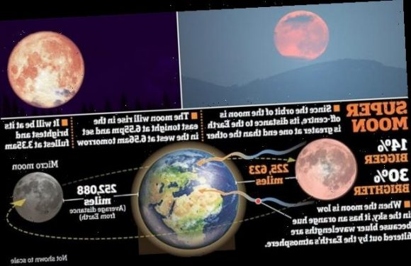 JANE FRYER details what the vast Super Moon might mean for us all