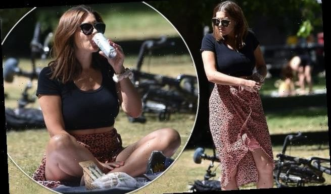 Imogen Thomas flashes her abs in a crop top during boozy picnic