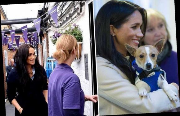 Meghan Markle has been secretly working with animal charity as it battles funding crisis during coronavirus lockdown