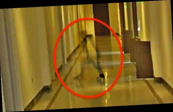 Alien news: Extraterrestrial spotted in mansion of Argentina President – shock claim