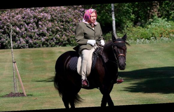 The Queen, 94, is pictured for the first time since heading to Windsor Castle for lockdown as she enjoys horse ride