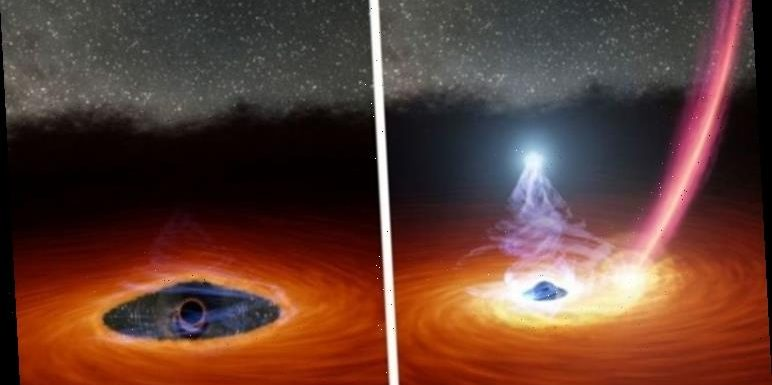 Black hole mystery: 'Mind-boggling' black hole's disappearing act prompts huge discovery