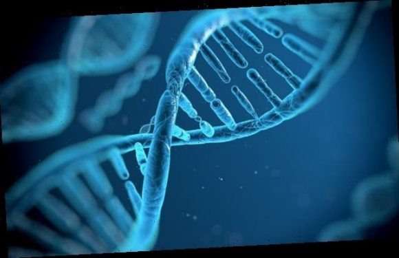 DNA of all living things has a 'right-handed' bias due to cosmic rays