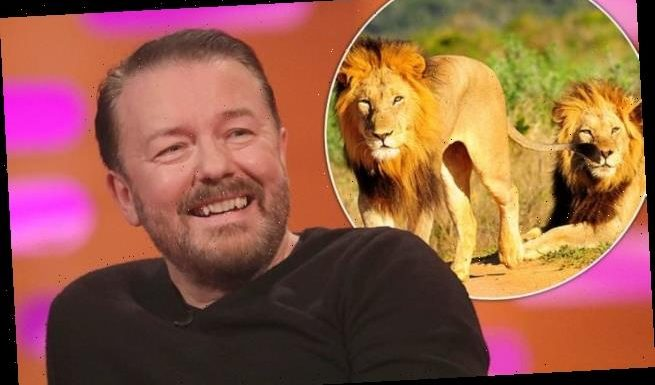 Ricky Gervais reveals he wants lions to EAT his corpse after his death