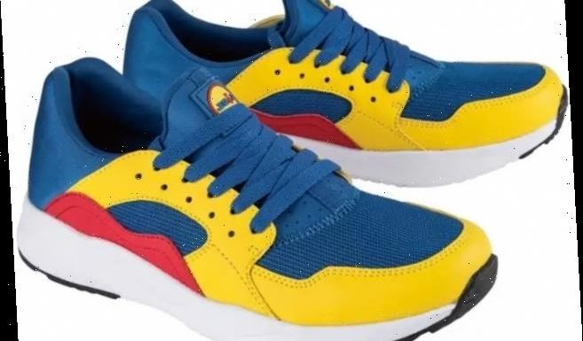 Savvy shoppers are selling £14 Lidl trainers on eBay for £450 after they spark new online trend