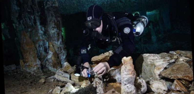 Prehistoric mine discovered in flooded cave complex in Mexico