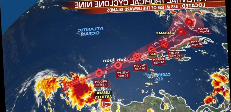 Tropical Storm Isaias forms near Puerto Rico; Florida track shifts: reports