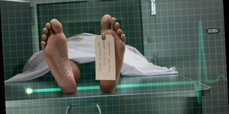 Life after death: Scientists outline the nine experiences people go through when they die