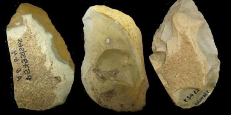 Archaeology: Climate change caused Neanderthals to innovate – 'Advanced planning proof'