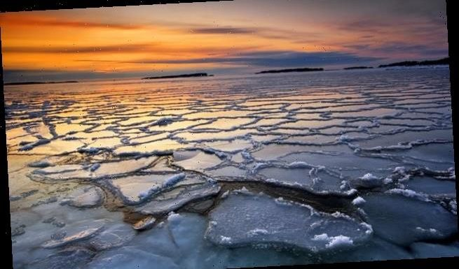 Arctic sea ice could completely VANISH by 2035