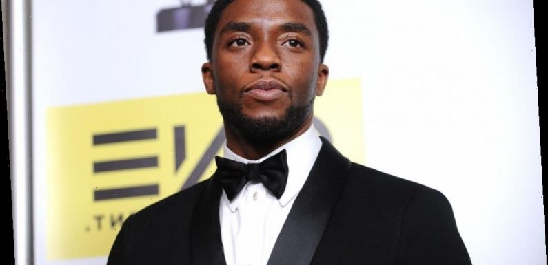 Chadwick Boseman Could Have Hinted at His Secret Battle With Cancer in a 2017 Interview