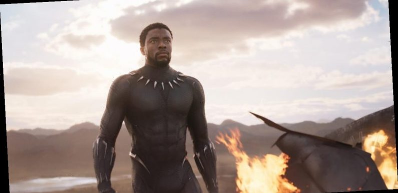 Chadwick Boseman Remembered by Parents of 'Black Panther' Fan He Visited in the Hospital