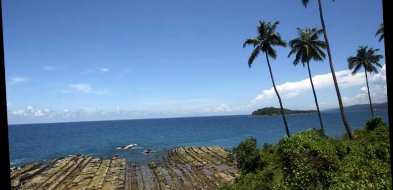 Four members of remote tribe in India test positive for COVID-19