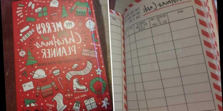 People are going wild for a £1.50 Christmas planner which promises to take the stress out of the festive season – The Sun