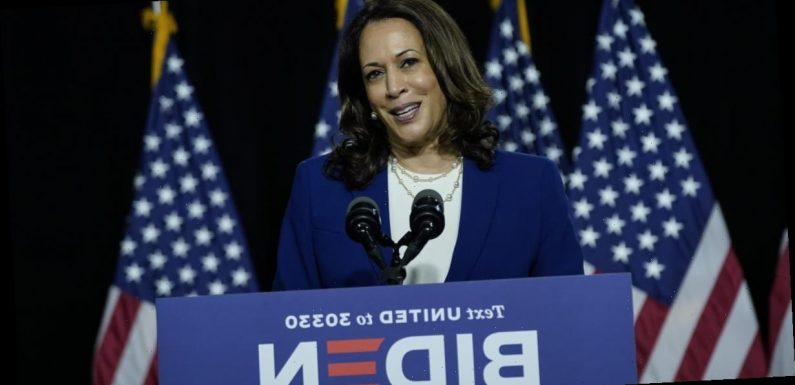 Here's Where Kamala Harris Stands on Key Issues, From Immigration to Healthcare