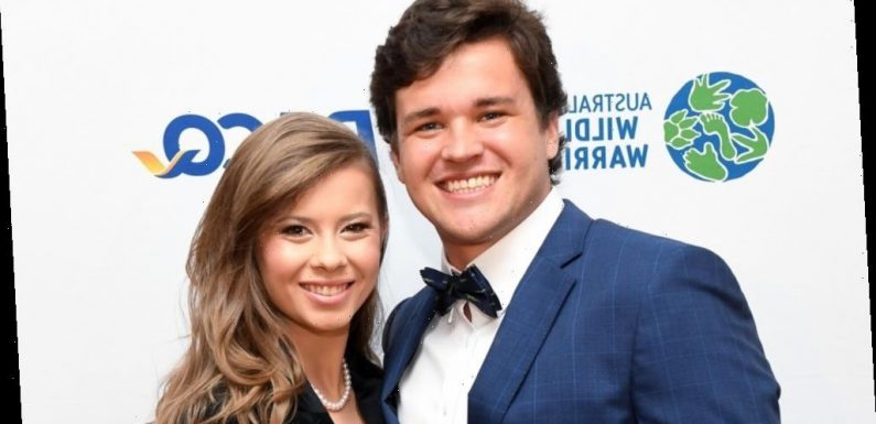 Bindi Irwin and Chandler Powell just shared exciting news with fans