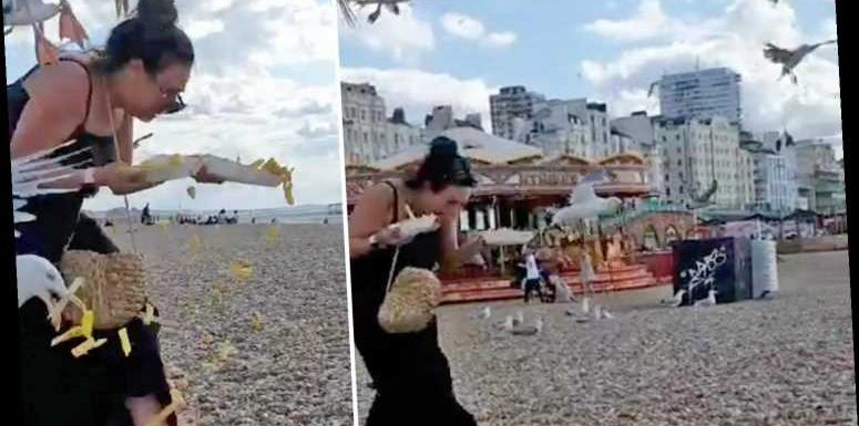Moment terrifying flock of dive-bombing seagulls chase screaming woman down Brighton beach and steal her chips