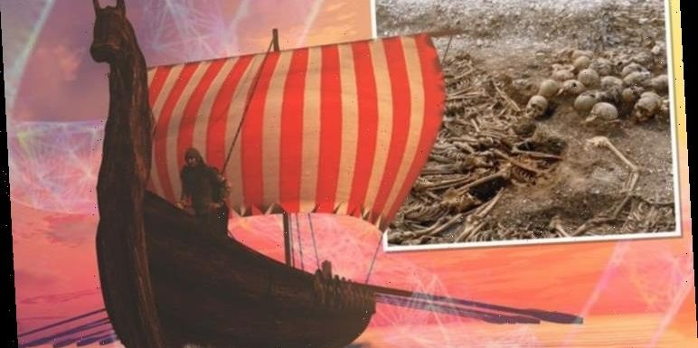 'History books will need to be updated' Viking DNA sequencing shatters Scandinavia origin