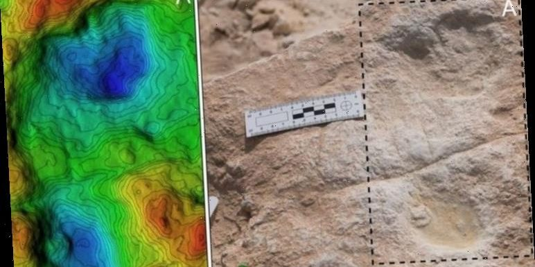Ancient human footprints in Saudi Arabia offer glimpse into humanity's past