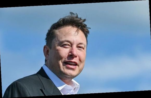 Elon Musk urges people move to Mars in grim solar DISASTER warning – 'Earth engulfed'