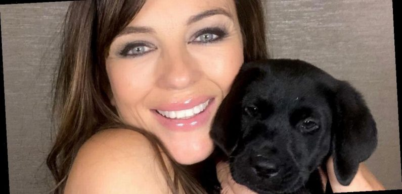 Liz Hurley welcomes adorable new addition to family with sweet social media post