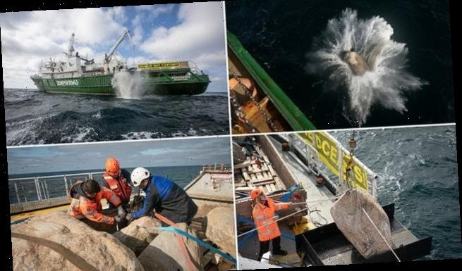 Greenpeace builds boulder barrier in the North Sea