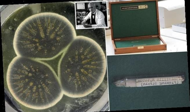Genome of penicillin fungus grown by Fleming in 1928 is sequenced