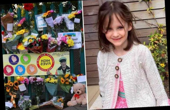 Girl, 6, killed by falling tree at school is pictured as family pay heartbreaking tribute to 'beautiful daughter'