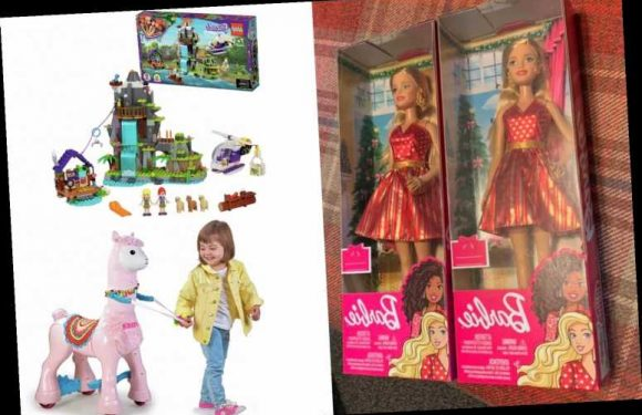 Thrifty mums are sharing massive toy hauls after Argos, Home Bargains and Tesco all slash prices in time for Christmas