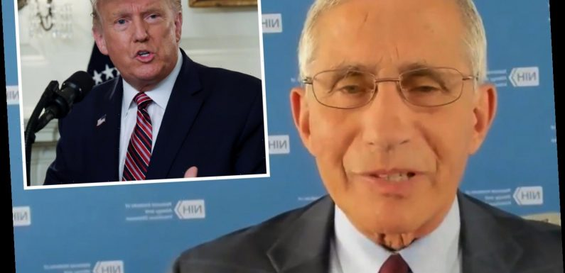 Dr Fauci DEFENDS Trump and says he 'didn't get any sense' the president 'was distorting anything' about Covid