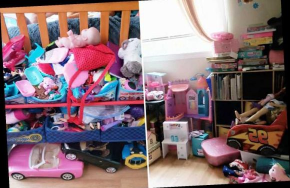 Aunt asks for advice on keeping her niece's mountain of toys tidy – but people reckon she needs to bin them