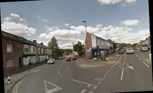 Man, 24, in hospital after shotgun attack in Sheffield street on night of bloodshed – The Sun