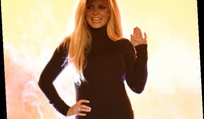 Britney Spears Fans Accuse Her Team of Orchestrating Cover-Up, Faking Pics & Videos