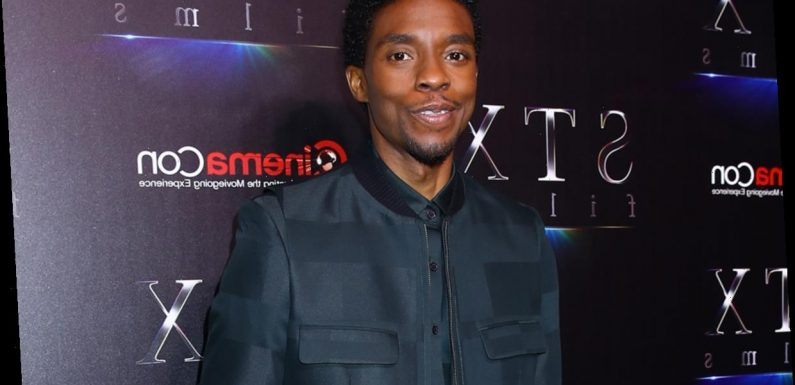 The Reason Chadwick Boseman Decided To Keep His Cancer Battle Under Wraps Will Break Your Heart