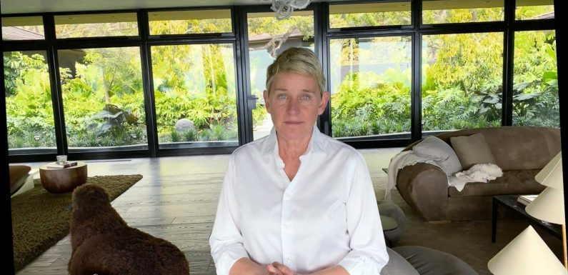 """A Former Staffer Claims Ellen DeGeneres Would """"Lay Traps"""" for Household Workers"""