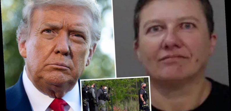 'Deranged' woman Pascale Ferrier who 'mailed ricin poison to Donald Trump at the White House' is identified