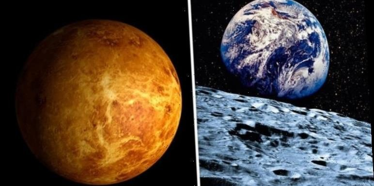 Venus: Fragments containing Venusian life could be found on the Moon and Earth